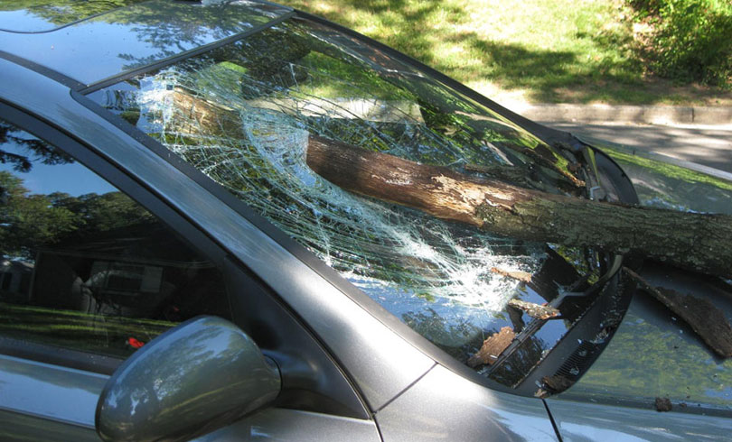 emergency car glass broken by tree
